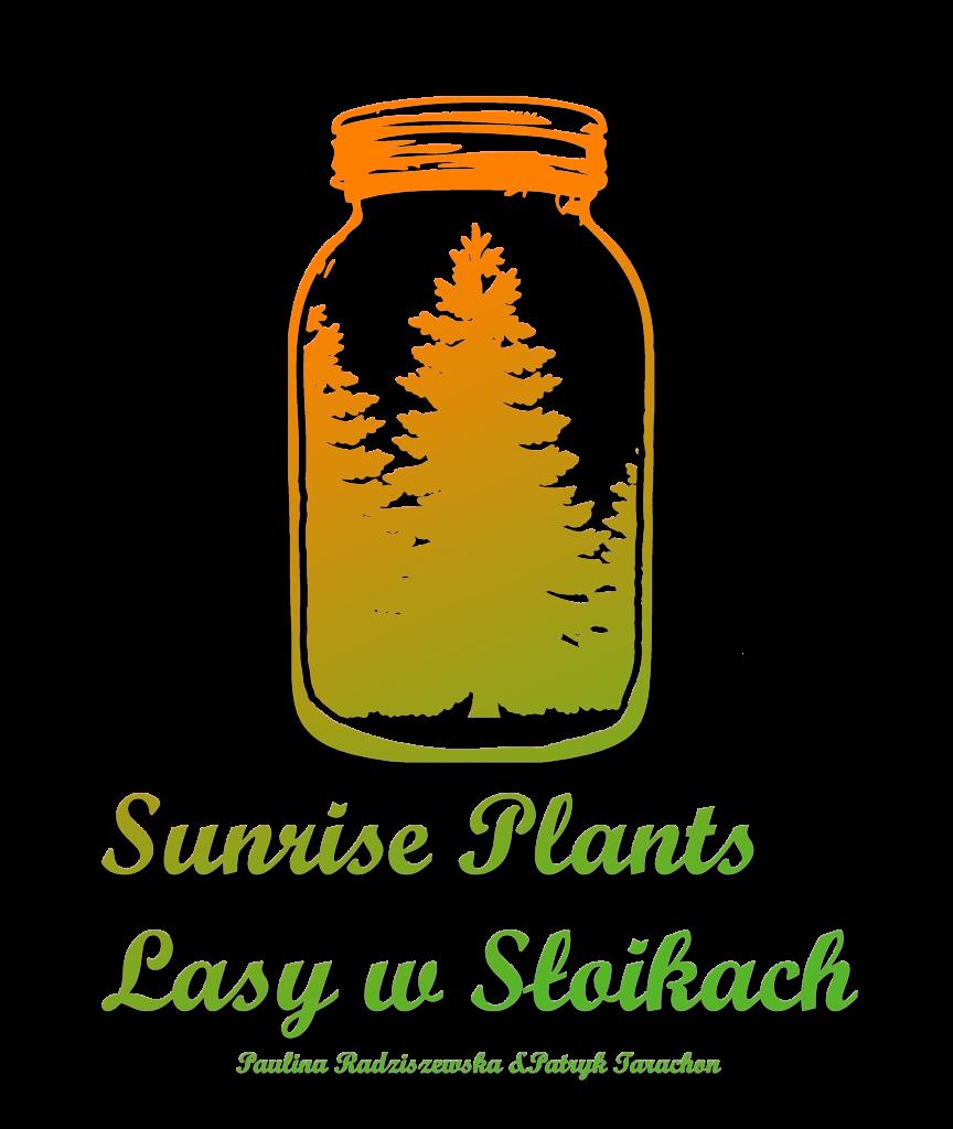 Stworzenie strony SunrisePlants.pl + strona + sklep + social-media + logo
