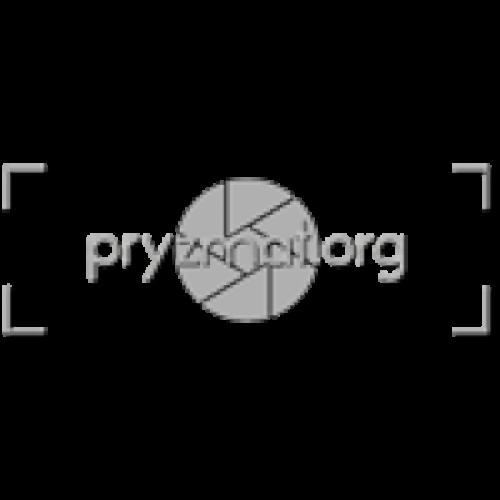 Logo Pryzmat.org - Patryk Tarachoń 2019