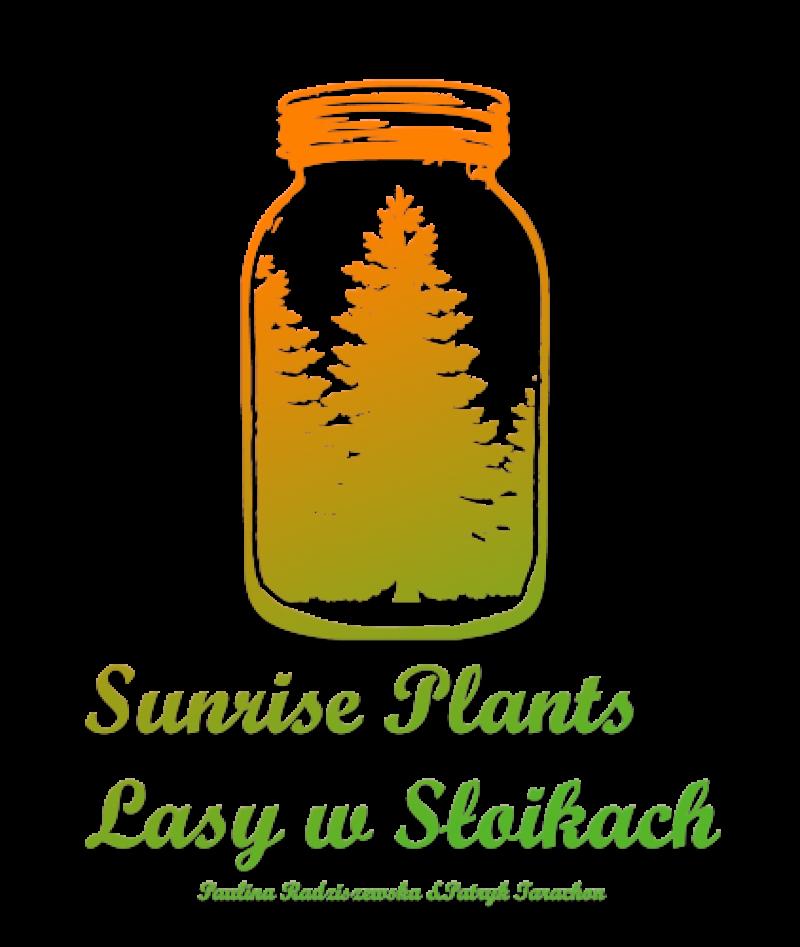 SunrisePlantsPL - logo Patryk Tarachoń 2019